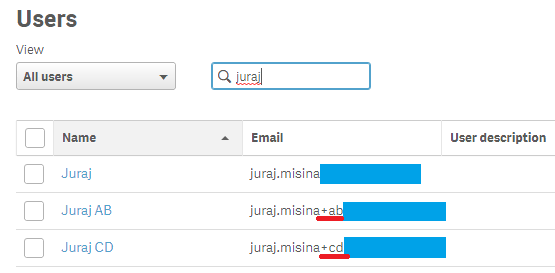 Users with the same email address